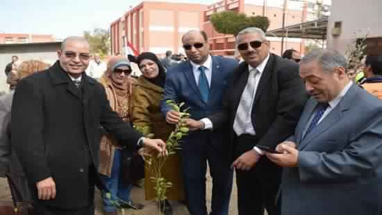 Coptic Church and Awqaf Ministry participate in 1000 tree planting initiative