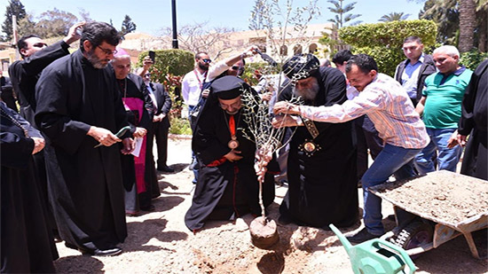 Leaders of Coptic Orthodox and Catholic Churches plant olive tree for Peace