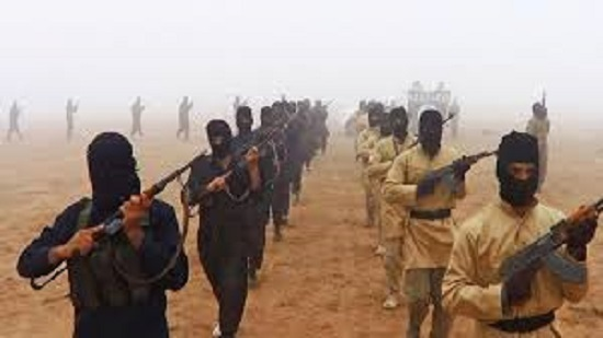 Islamic State West Africa claims killing and execution of 29 Nigerian soldiers