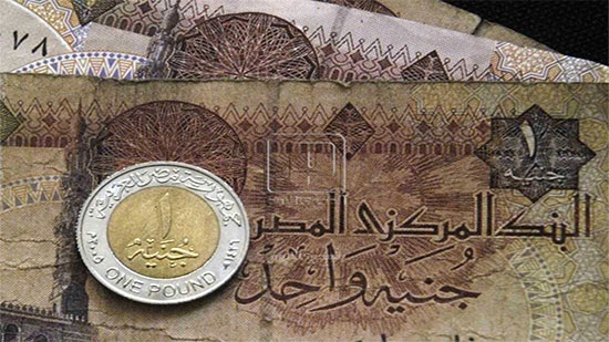 Bloomberg: Egyptian Pound came in second place as best currency in 2019