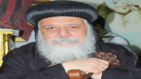 Pope Tawadros arrives in France and starts a pastoral visit