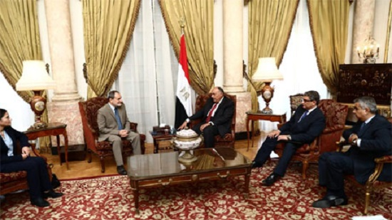 Egypt attaches great importance to Syrias territorial integrity, FM Shoukry tells Syrian delegation