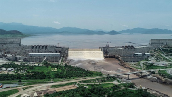 DR Congo expresses support for Cairos position on GERD: Egyptian presidency