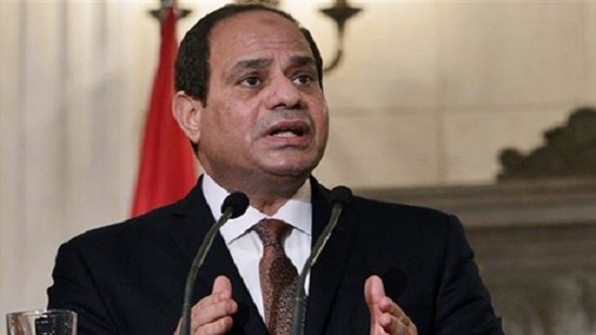 Egypt to adopt additional precautionary measures over coronavirus: Sisi